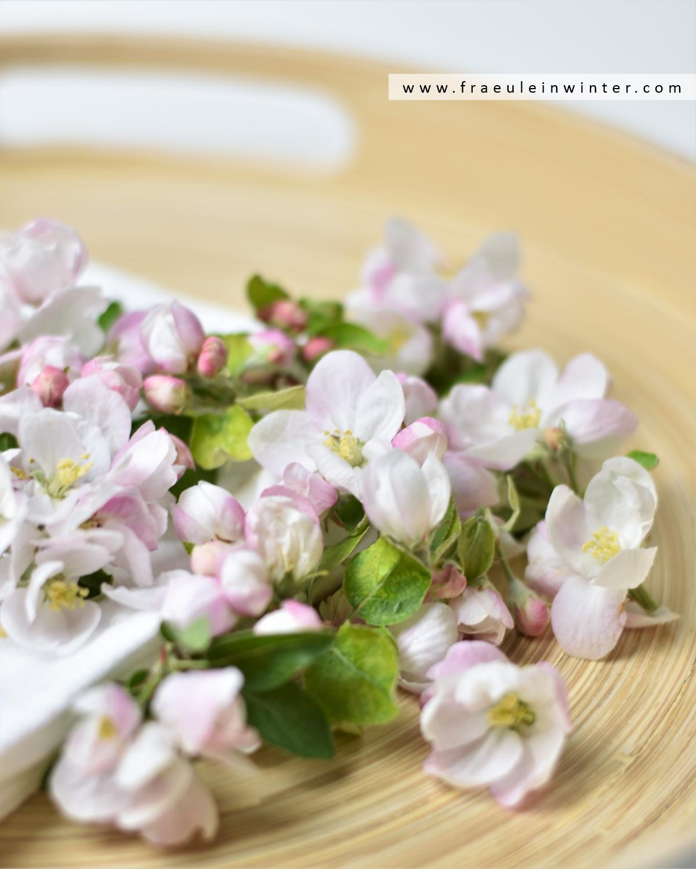 Frische Apfelblüten
